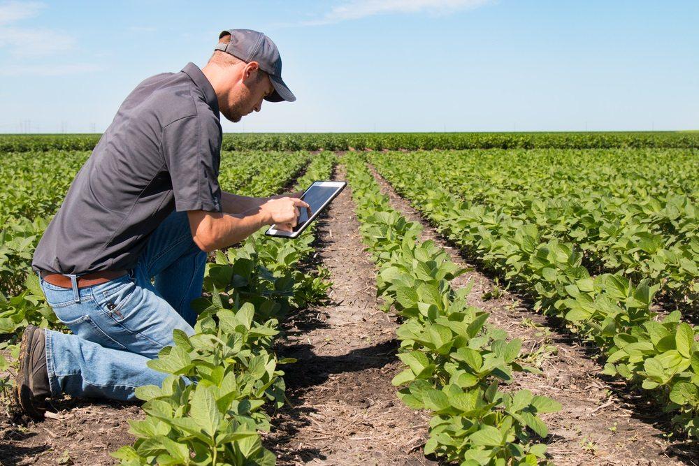 Stef Beerens, NIMA Food & Agri: 'Hoe zou een ander bedrijf dit aanpakken?'
