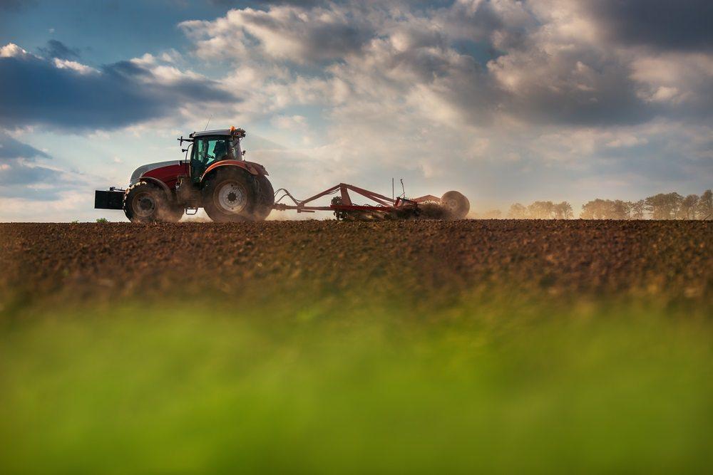 (Interview Stef Beerens) 'Merkloze bulk in Food & Agri? Dat zie je echt verkeerd.'