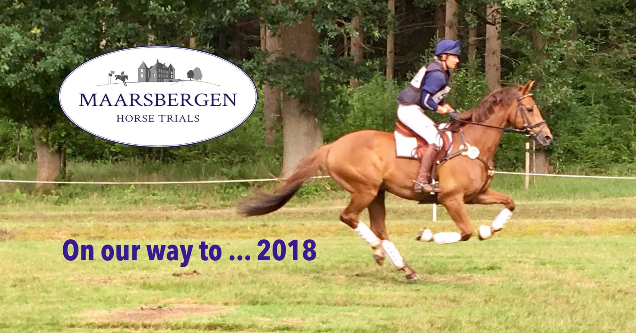SMP Anja Zandbergen over hét paardenmiddel: vrijwilligerswerk